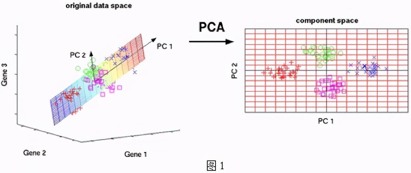 数据挖掘中常用的基本降维思路及方法总结