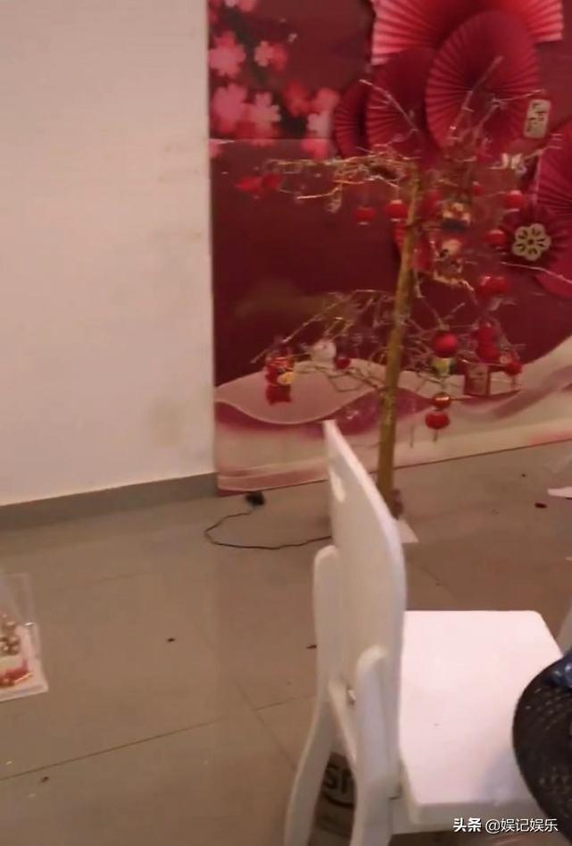 李湘回应租房脏乱,称离开前已打扫,房主:联系他们协商后才清理
