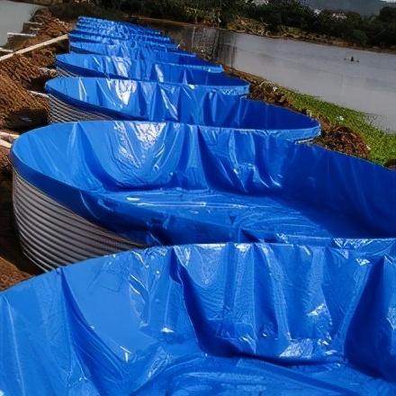 帆布鱼池高密度养鱼,对帆布鱼池养殖的几点改进建议和注意事项