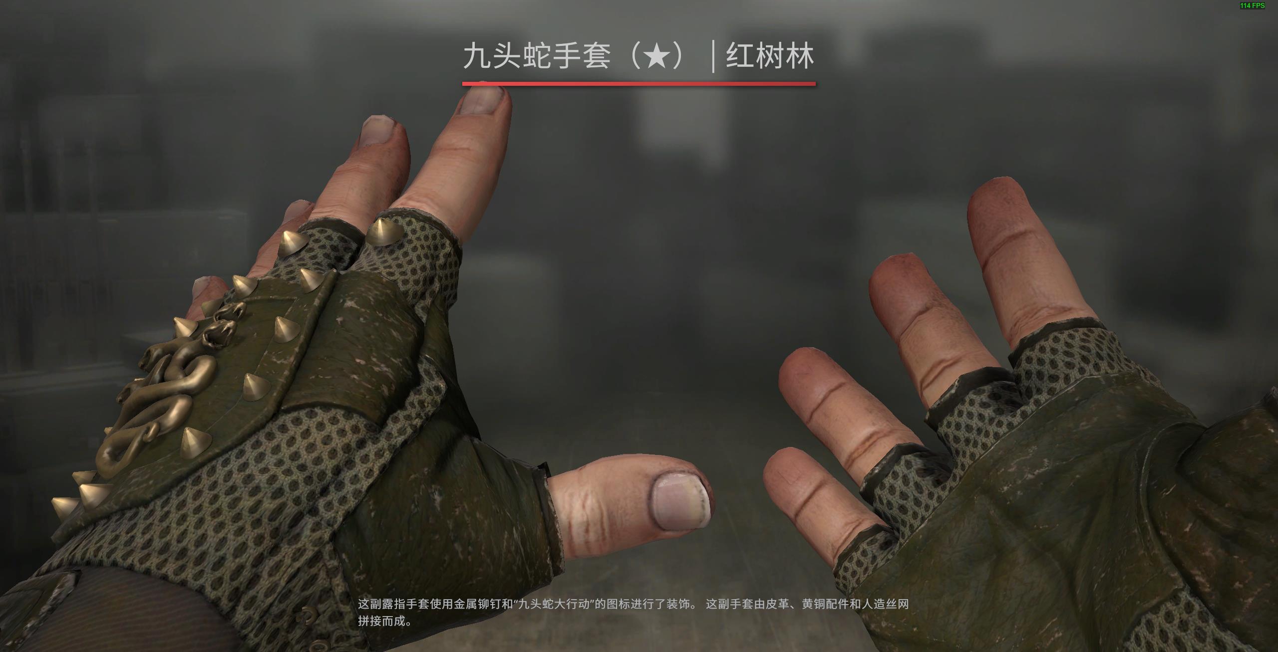 CSGO皮肤推荐——九头蛇手套 | 红树林