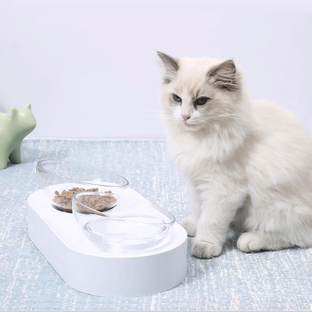 自制猫饭的这些误区,请记得避开