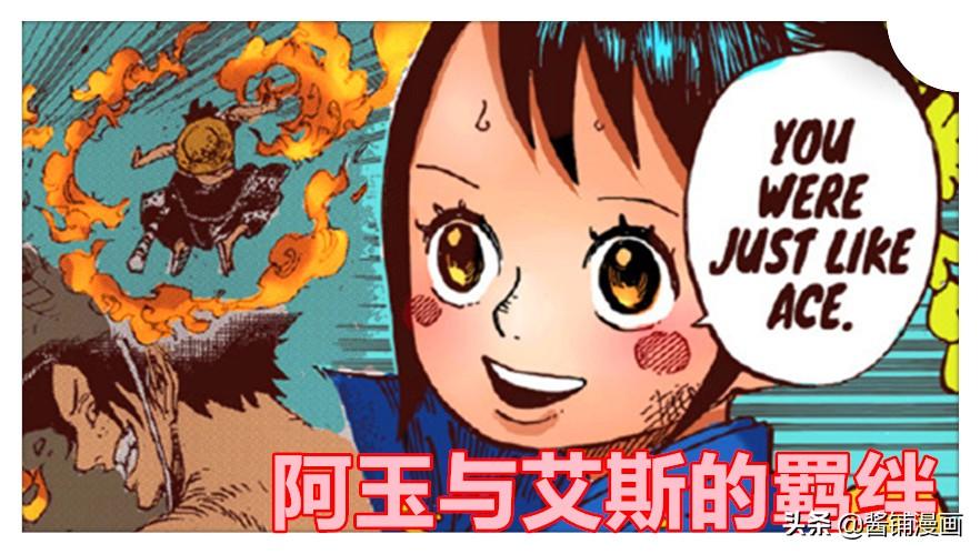 海賊王官方情報,尾田公布阿玉的生命卡,並解答吃了何種惡魔果實