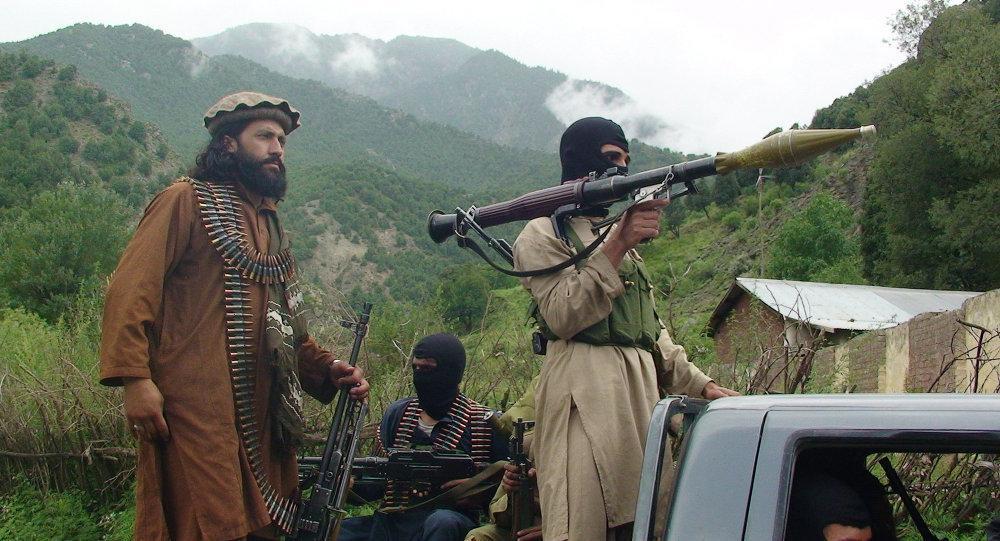 夹缝中奇迹壮大,塔利班之谜:兵源、钱、武器,都从何而来?