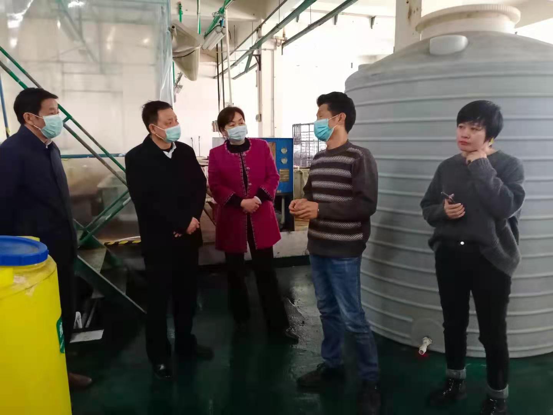 湖北省环保督察交办信访件办理监察组到团风、浠水县督察