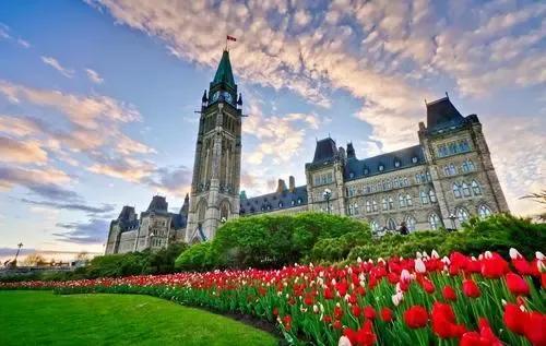 """关于""""加拿大""""的26个冷知识,让你了解一下全面的加拿大"""
