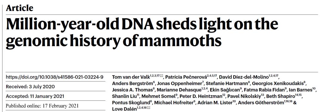 突破百万年极限,科学家成功提取165万年前猛犸象DNA-第2张图片-IT新视野
