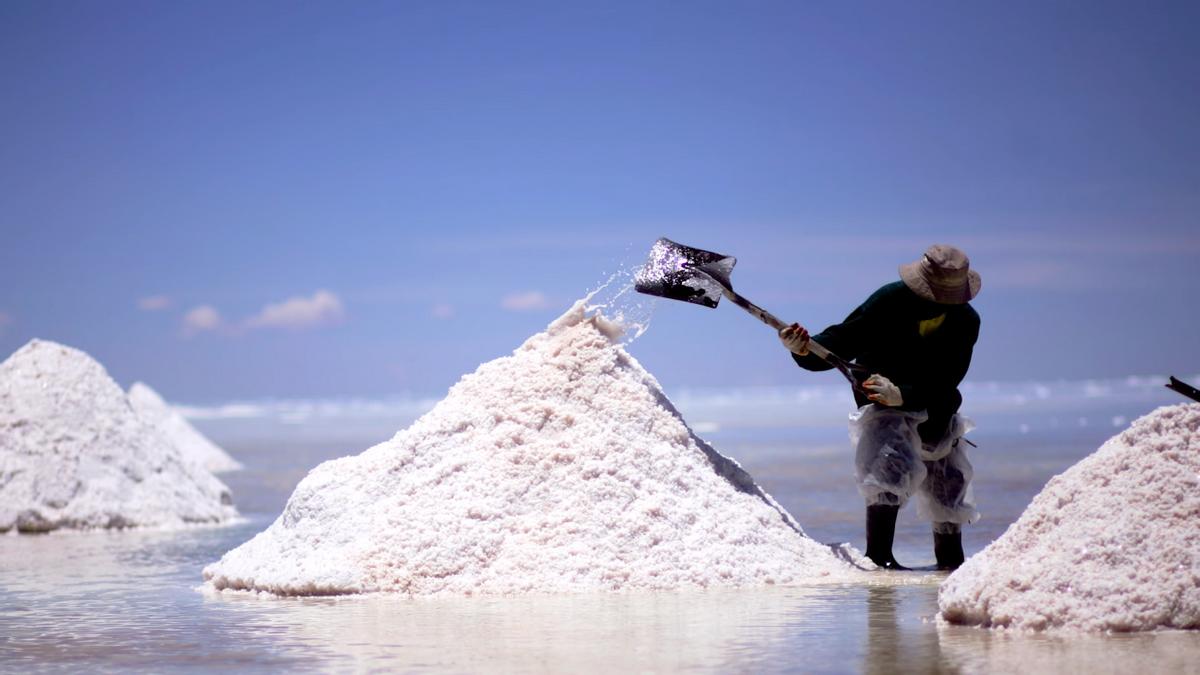 14000元/吨,澳企锂精矿拍出天价!澳大利亚47亿出口目标或实现?