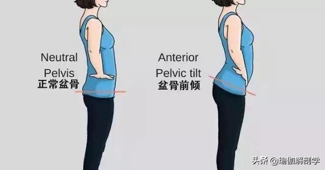 稳定骨盆的8个动作,超级有效