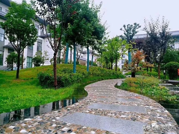 耀州中学,承载了多少铜川娃的青春回忆