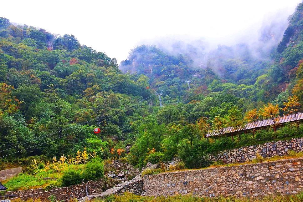 雨过天晴,国庆小长假牛背梁赏秋正当时,内附绝美风景图