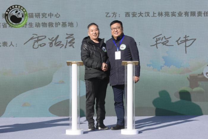陕西将建设秦岭大熊猫科学公园