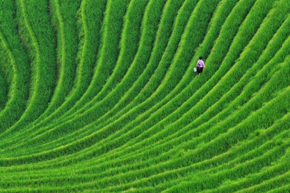 广西金秋必看美景,风景靓丽媲美桂林山水,距桂林仅80公里