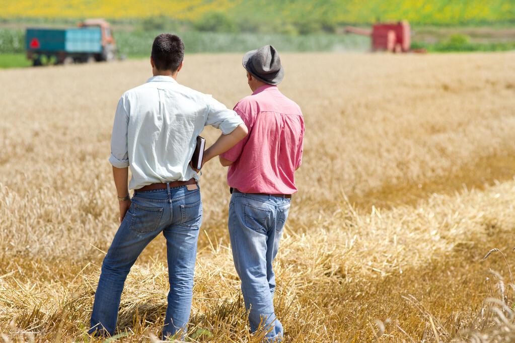 土地流转:农民的后顾之忧,可以从哪几个方面解决?