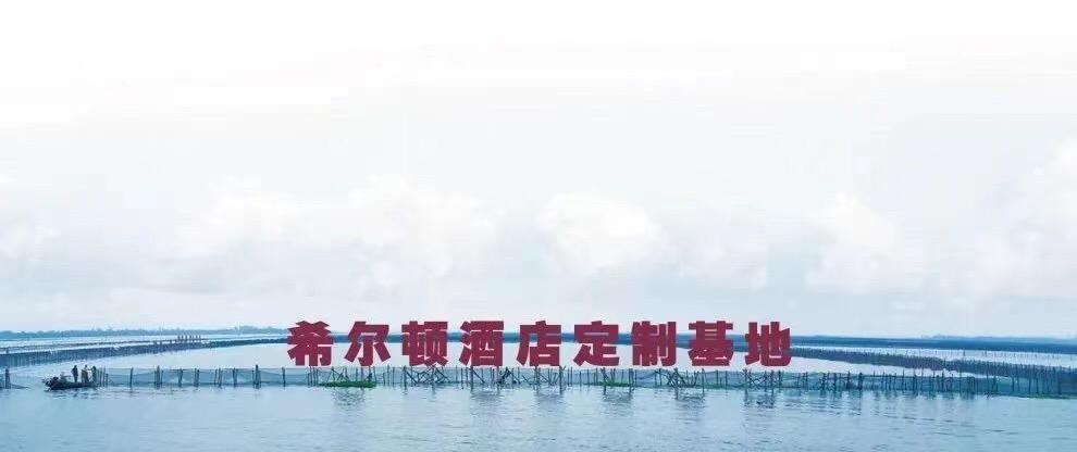 食蟹记@北京王府井希尔顿酒店