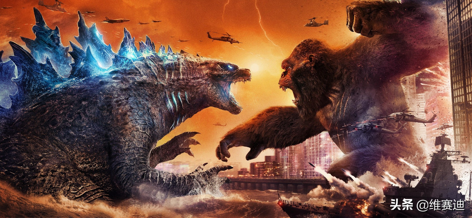 《哥斯拉大战金刚》:打得够过瘾,相爱相杀的两只大怪兽