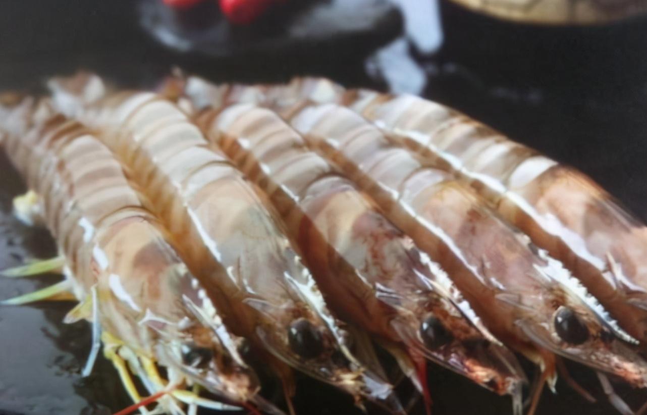 基围虾是什么虾?对虾、明虾一样吗?区别可不小 买虾前先弄明