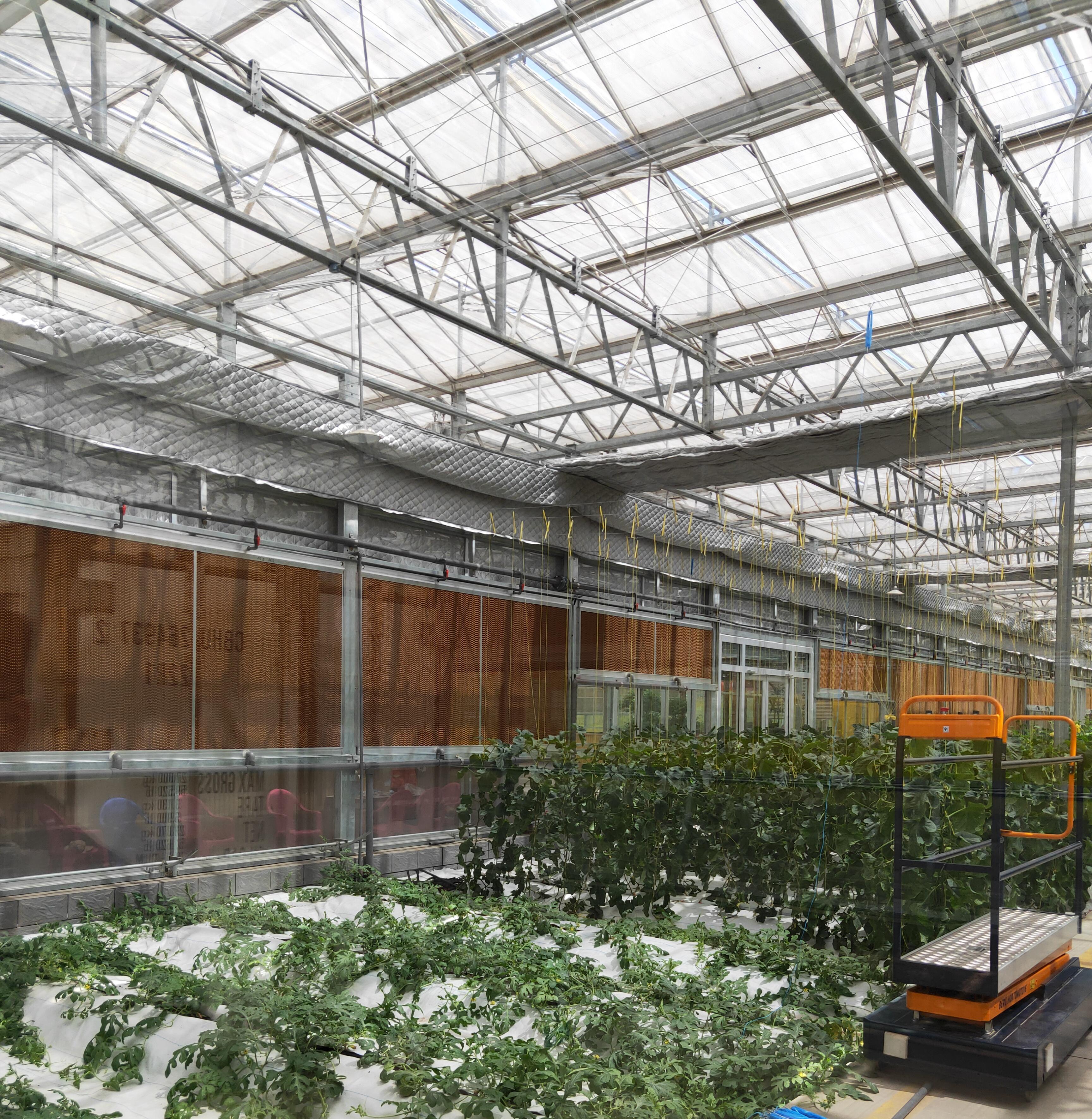 什么是智能温室?智能玻璃温室是怎么组成的?