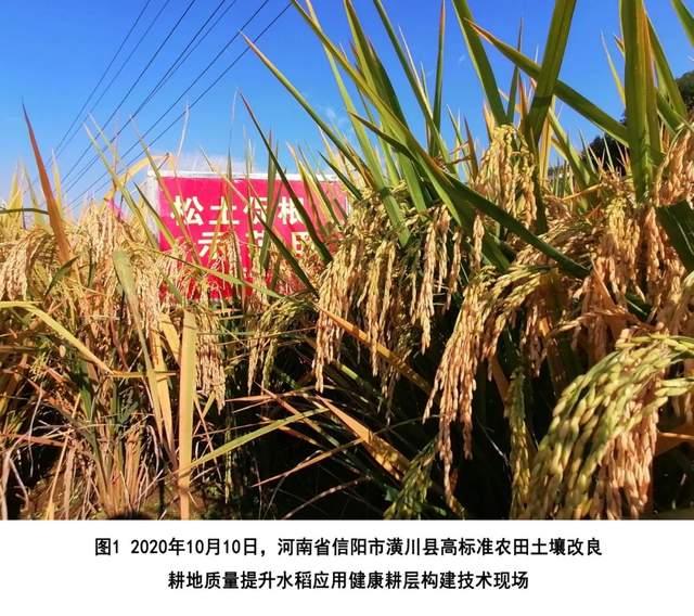 2021年农业主推技术——健康耕层构建技术