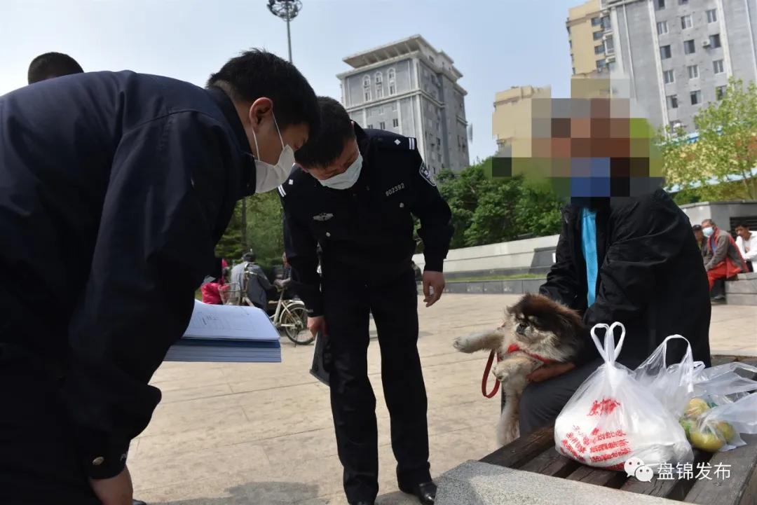 盘锦公安启动遛犬专项巡查!办犬证,管理费这么交!