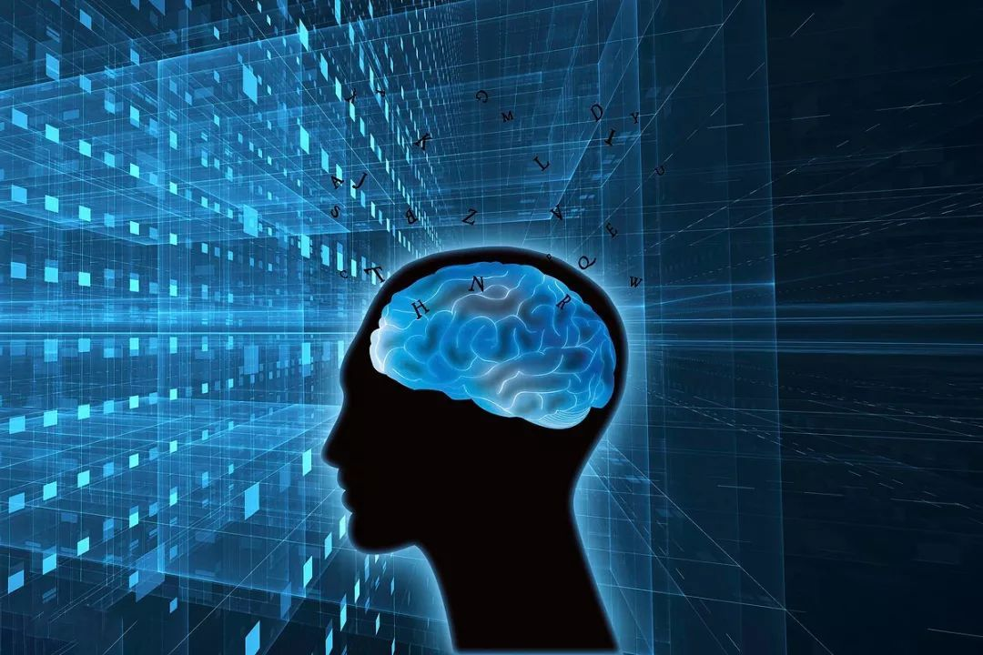 你有真正了解过你的大脑吗?