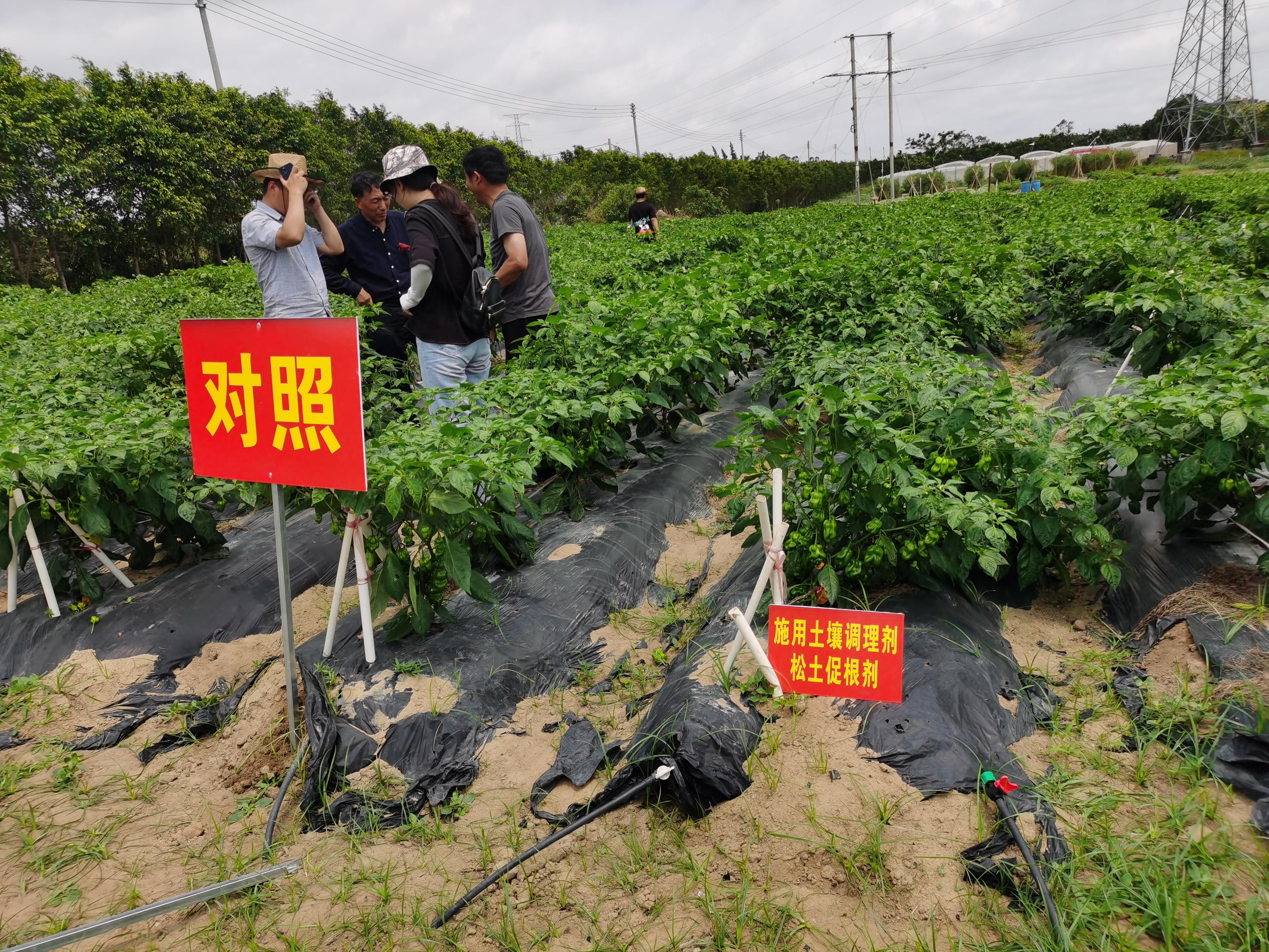 科学发展农业,提高耕地质量