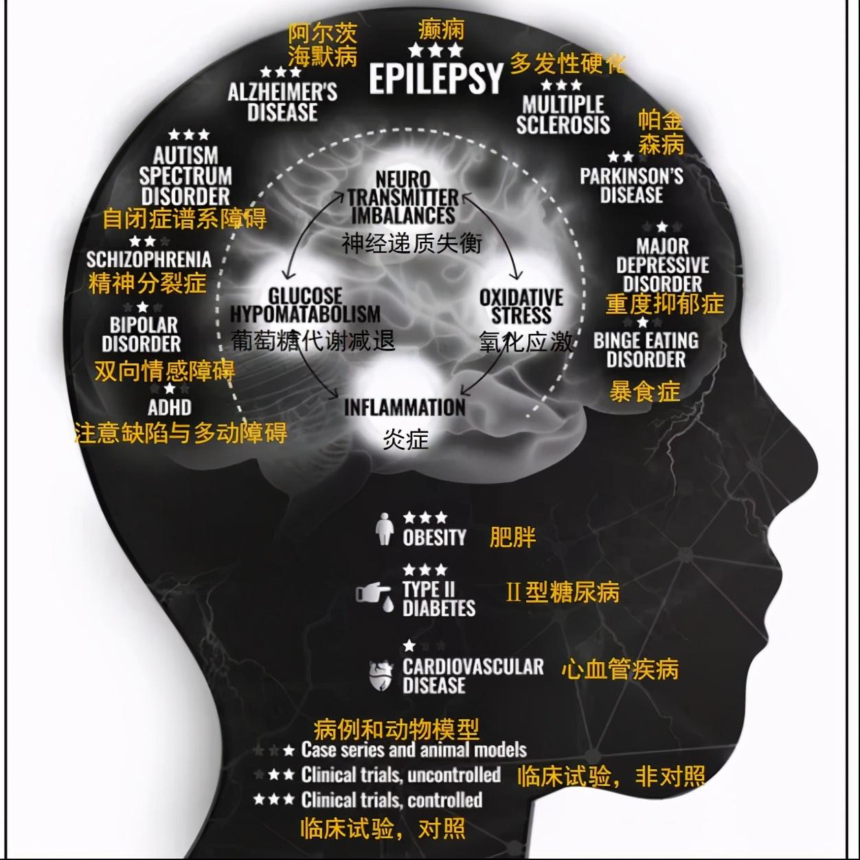 健酮生酮饮食丨生酮饮食对于哪种癫痫有作用?