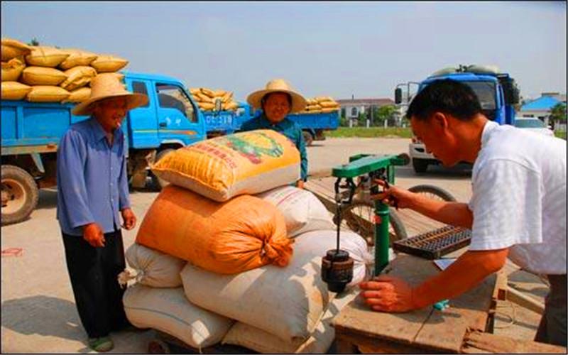 40多岁的人在农村,5万元的投入,做什么生意可以月收入一万?