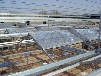 温室大棚之北方人爱用的纹络型温室顶部覆盖阳光板如何区分优劣?