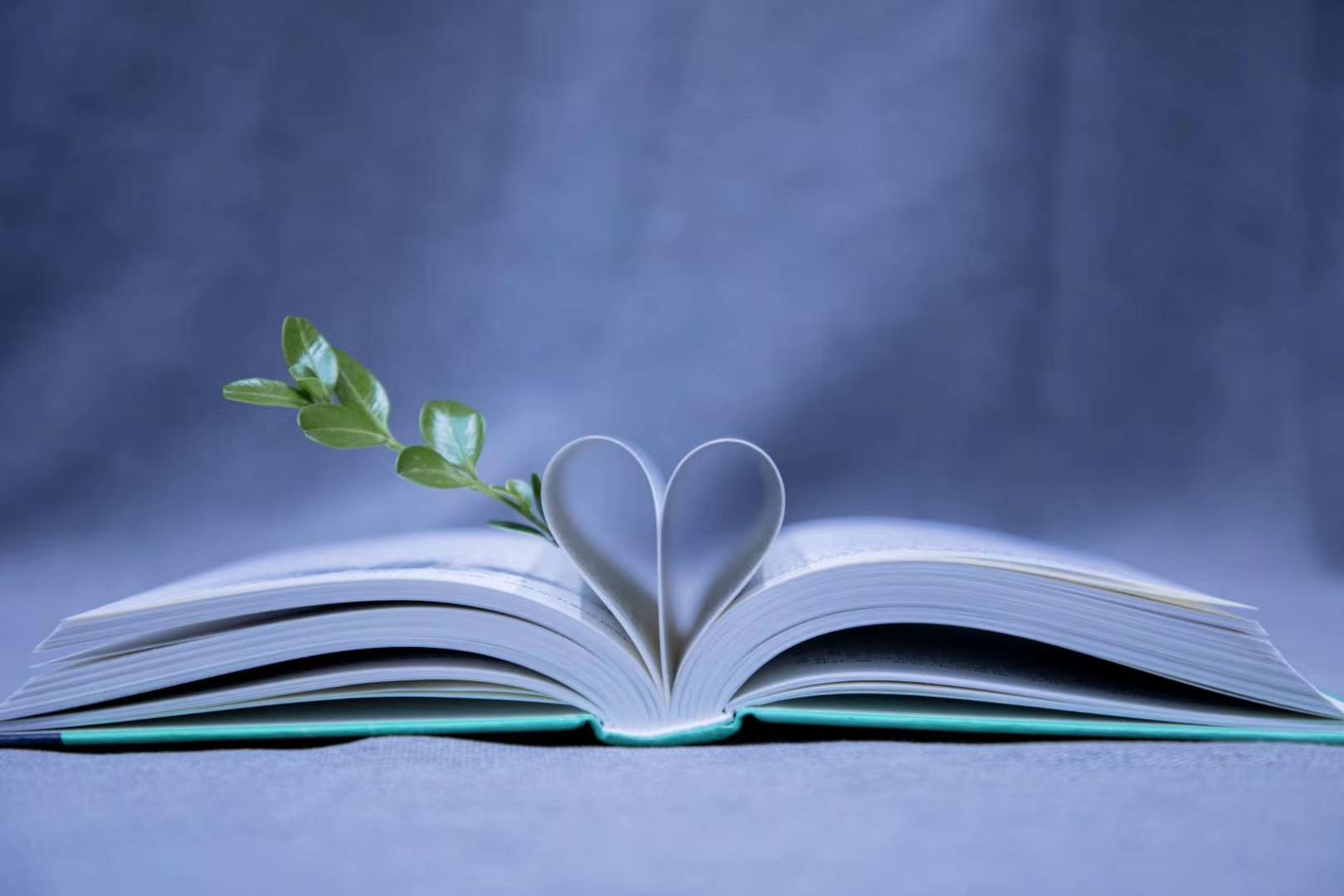 墨子书院:从书里的全世界路过