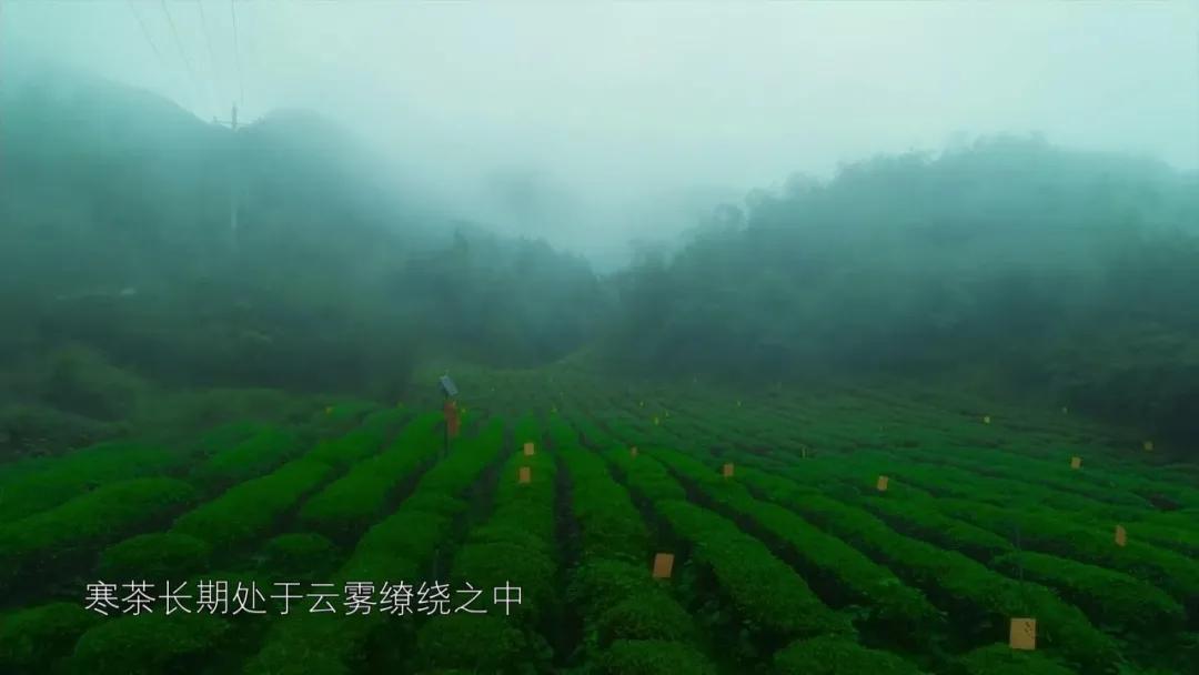 世界看湖南丨新化天门:原味老家,梦里天门