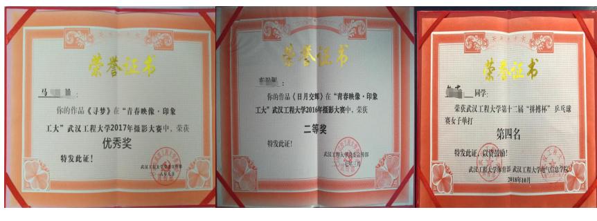 武汉工程大学高等教育全日制本科助学班 参加校级活动荣誉榜