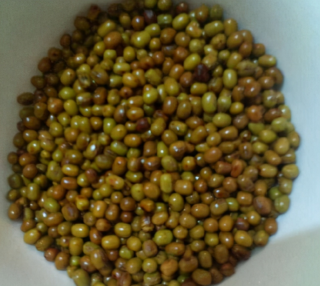 如何快速煮好綠豆湯? 不要直接下鍋煮,多加1步,10分鐘綠豆開花