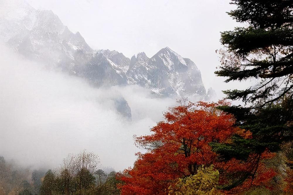 6個絕佳賞楓之地,即使秋末初冬,也可以看到紅葉