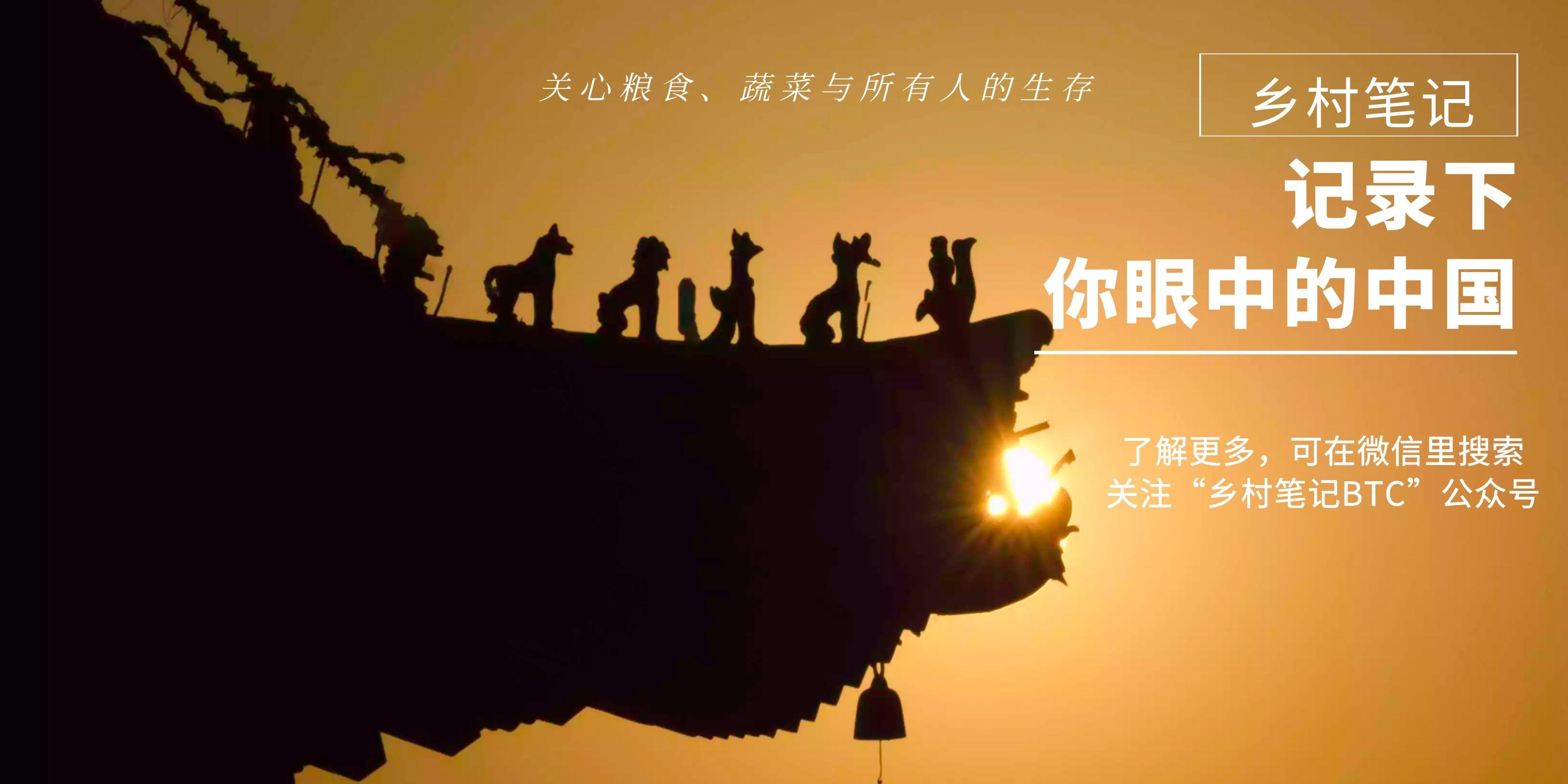 大理:金庸江湖里的段氏皇族、天龙寺与无量山究竟在哪里?