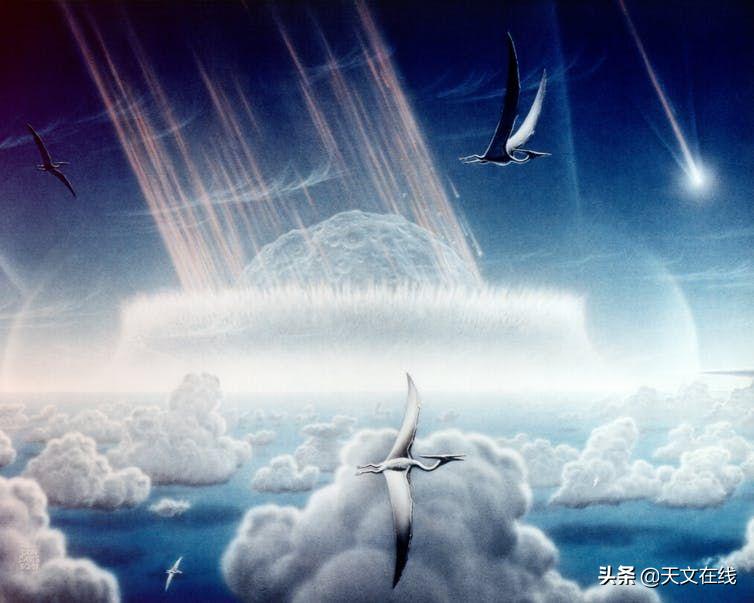 六千万年前,当灾难来临,植物只能坐以待毙吗?