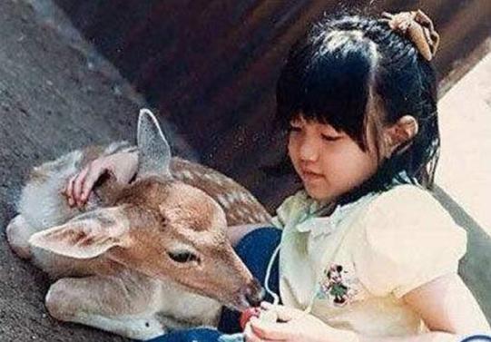 小笼包陈妍希的甜美人生