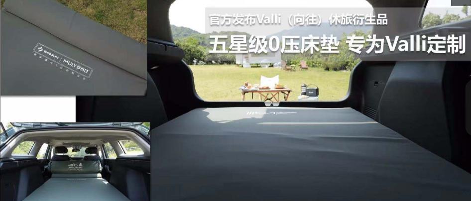 """""""大平层休旅车""""Valli(向往)正式上市 售价 区间7.98-10.58万元"""