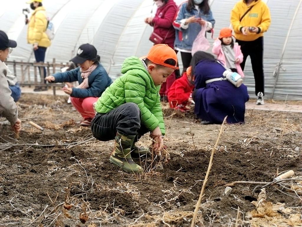 """""""种植绿色梦想..""""2021中营亲子户外植树拓展活动圆满举行"""