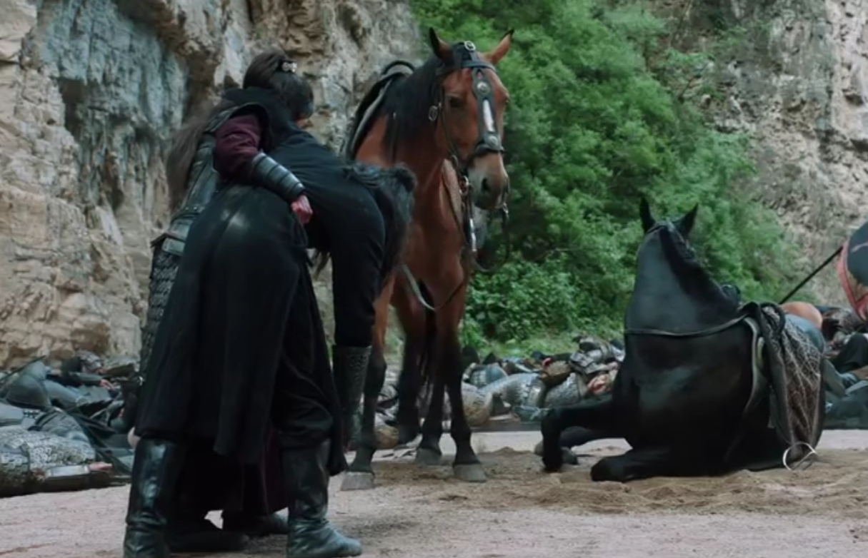 《上阳赋》里最触动我的是几匹战马,它们不会说话却赚足了眼泪