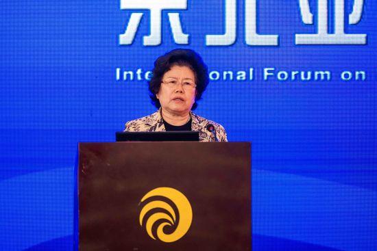 陈文玲:在世界制造业变局中东北应抓住发展机遇
