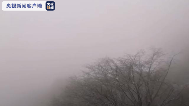 """气温降""""裹银装""""华山景区迎来入冬首场降雪"""