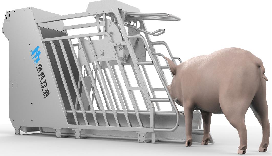 南商农科小智倌妊娠饲喂器,科学掌握妊娠母猪分段饲养、高效繁殖