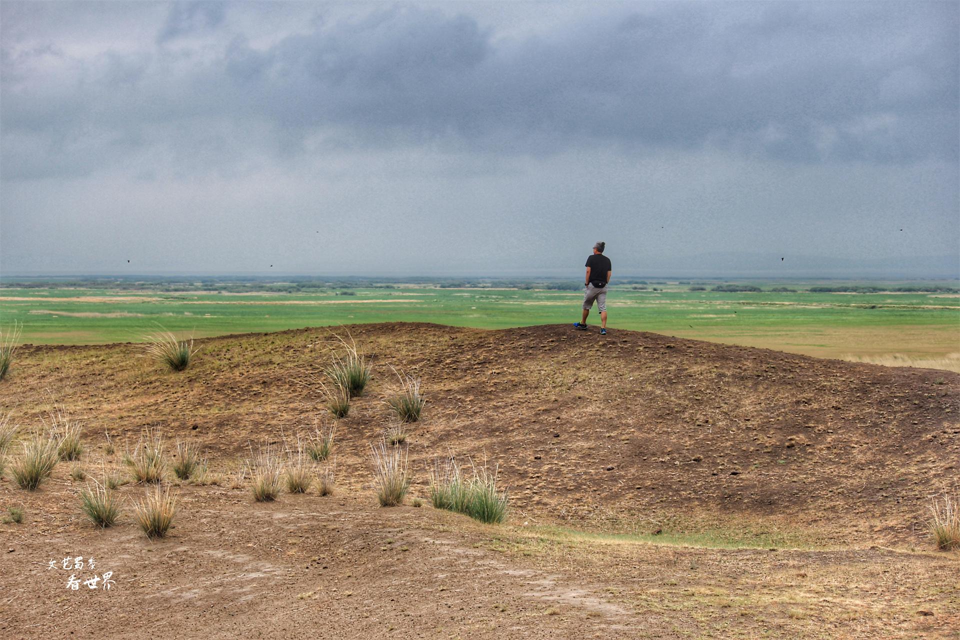 """呼伦贝尔大草原最美的公路是""""卡线"""",200多公里每一步都很惊艳"""