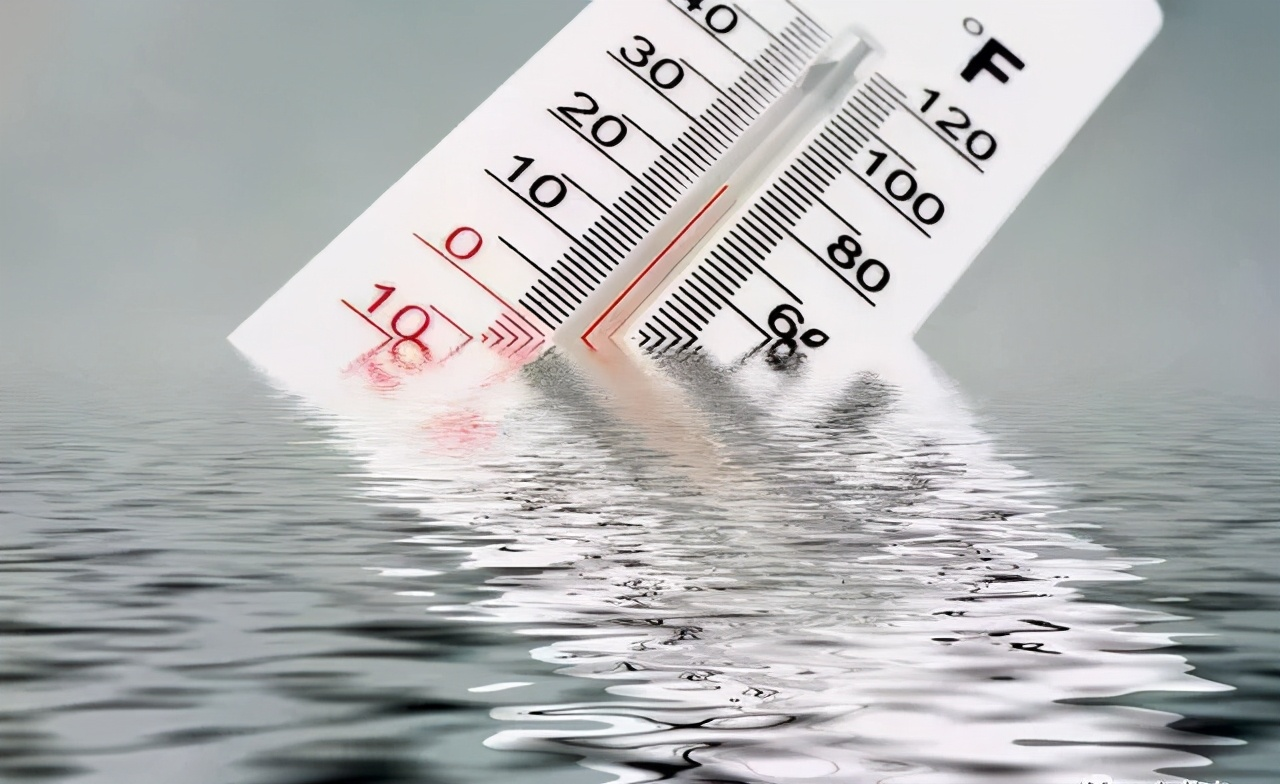 解析低温时节令人防不胜防的水霉病!每年都这样,每年都惨烈