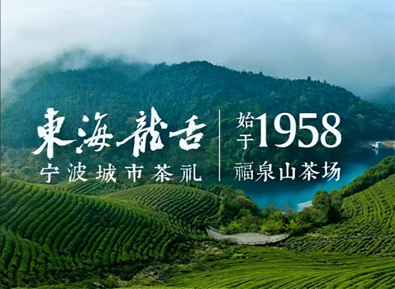 宁波迎第2届5.21国际茶日,群贤诗词赠福泉山.东海龙舌