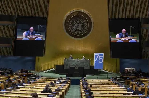 2021年爱尔兰再次入选联合国安理会成员