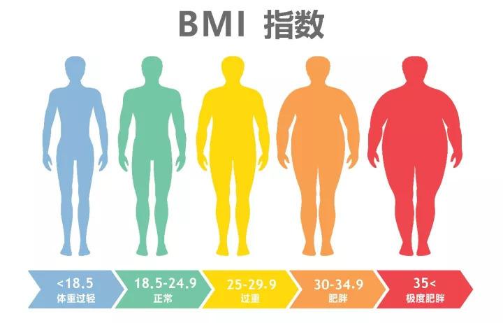 明星为了上镜好看有多拼?175男星体重58公斤,减肥后体重引热议