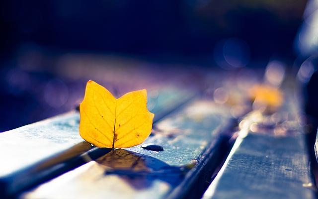 """那些被忽视的爱,往往是""""真爱"""""""