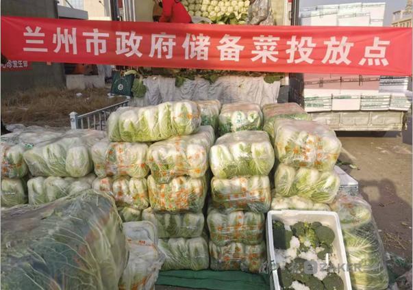 蔬菜管够!兰州首批投放4000吨政府储备菜