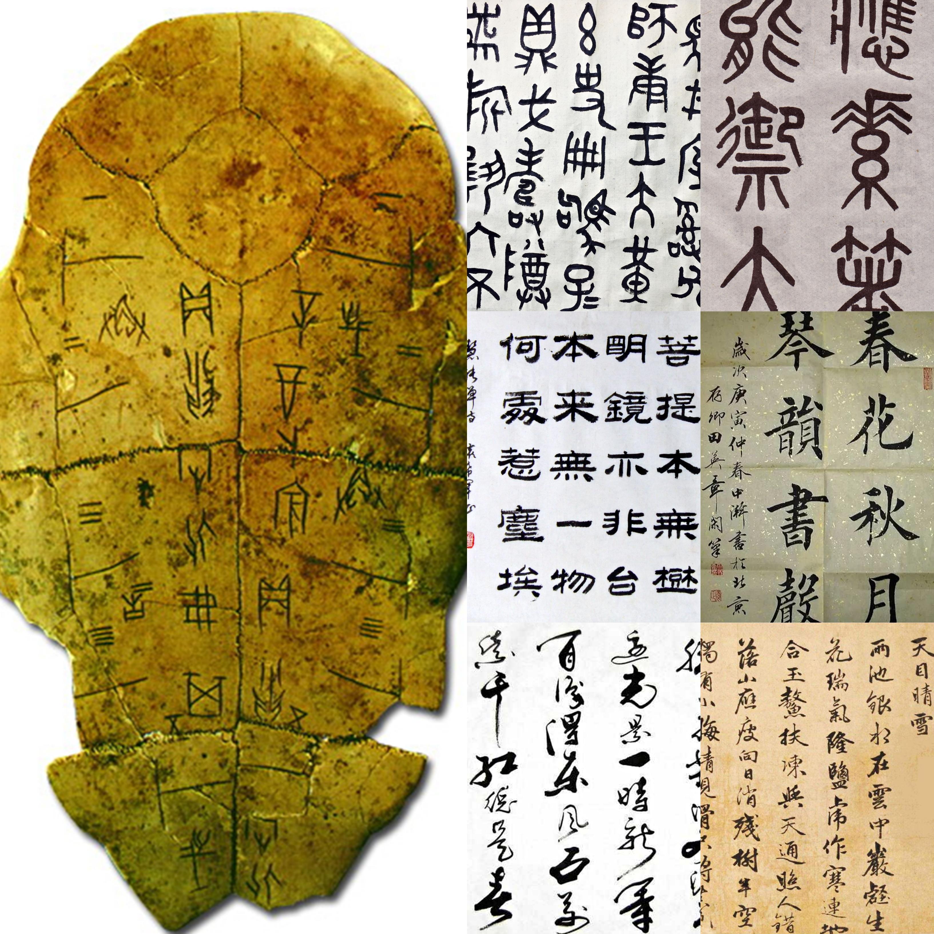 汉字的发源及变革